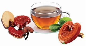 Uống cao hồng sâm, nước sâm Hàn Quốc có tốt không?